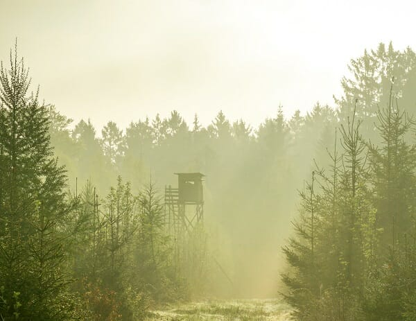 Best Ground Blinds For Bow Hunting