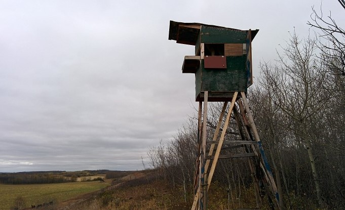 Elevated Hunting Blinds