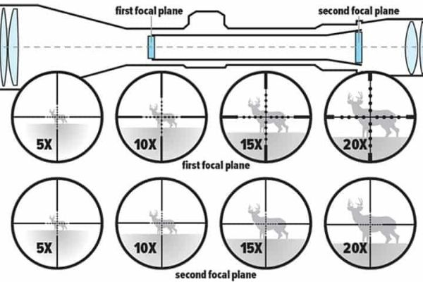 Focal Planes While Hunting