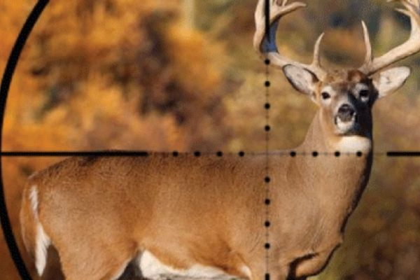 How do you choose the right scope reticle