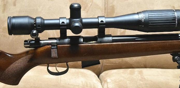 Best Gun Scope for 17 HMR