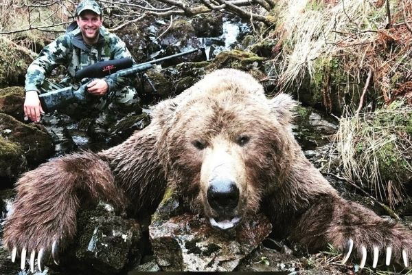 Grizzly Bears hunting